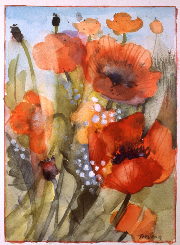 Field Poppies Print