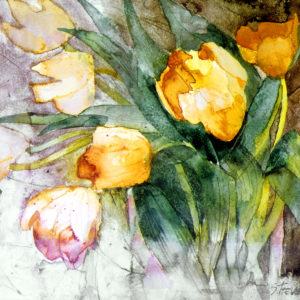 Pale Orange Tulips Print