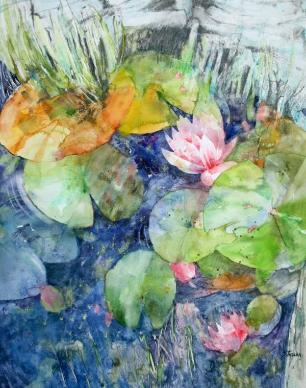 Scottish Waterlilies Print
